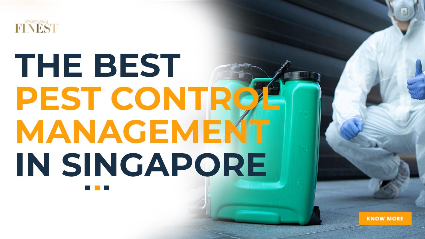 pest control management services in singapore