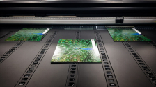 Megapixel: The Printing Specialist
